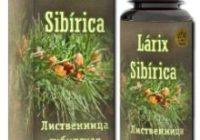 Larix Sibirica от усталости и стресса