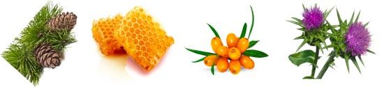 Slimagic натуральные ингридиенты