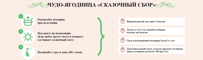 как использовать ягодницу для дома