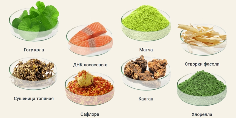 состав добавки для похудения