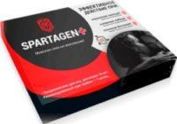 Spartagen+ для стойкой эрекции